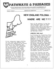 New England Polonia – Where Are We?